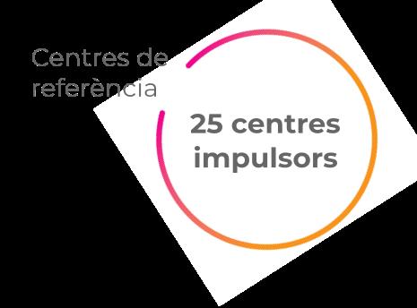 Centres de referència, 25 centres impulsors